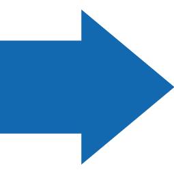 PermaStripe Short Arrow TL527